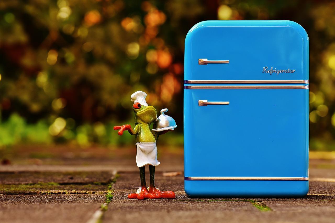 de beste koelkast volgens Checko in 2021