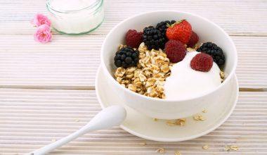 yoghurtmaker